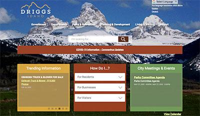 Driggs website